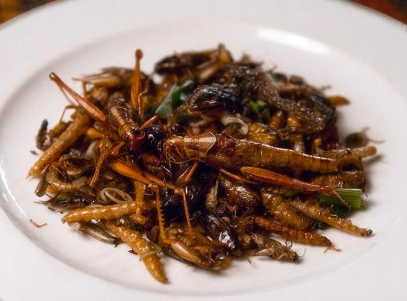 жареное насекомое